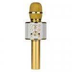 BK3 Cool sound KTV microphone (золотой)/караоке микрофон Hoco